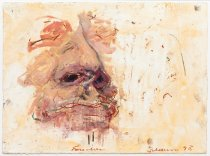 Image of Tony Scherman - untitled [nose and lips]