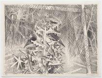 Image of Jack Shadbolt - Secret Garden #7
