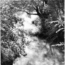 Image of Yadkin River
