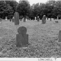Image of Cemetery - Cemetery, New Hope Methodist Church, SR 2019, Ararat vicinity.  Inscribed gravestones date from the 1850s; some of the uninscribed stones may be older.  For more information, see SIMPLE TREASURES page 114.  State Record 55.