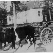 """Image of Mount Airy 1908 - Mount Airy, 1908, """"spot unknown.""""  Picture shows two men and a woman, ox-drawn wagon, and a house in the background.  Note on back says """"taken by Mount Airy visitor in 1908."""""""