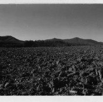Image of View from Round Peak Church - A scene of the mountains from Round Peak Church.  Photo is by Robert Merritt dated 1978.