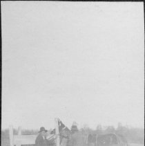 "Image of Shoeing Mules - Shoeing mules.  Note on back of picture adds, ""in the south"".  Three men and two mules are in a yard beside what appears to be a fence."