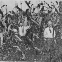 """Image of Cornfield - Two men standing in a cornfield.  Note on back of picture reads: """"J. D. Smith on right - son, probably Jefrey, on left.  Evidently in 'Smith bottom' where shopping center is.  West side of Lovill's Creek on north."""""""