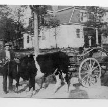 Image of Early Transportation - Mount Airy 1908.  Small picture showing oxen pulling a wagon, with a man seated in the wagon, a man standing beside the oxen, and a woman standing beside the wagon.  A house can be seen in the background.