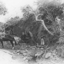 Image of Horse and Buggy in Santa Monica Canyon - undated