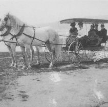 Image of Georgina Jones, Marion Jones and Mary Jones in Horse-Drawn Carriage at Beach - undated