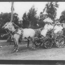 Image of Family of Senator Jones in Rose Adorned Carriage, 1895 - 1895