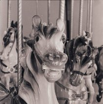 Image of Santa Monica Carousel, 1981 - 1981/06/13