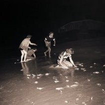 Image of Grunion Hunters on the Beach, 1949 - 1949/03/16