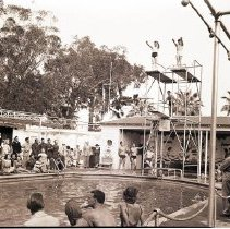 Image of U. S. O. Diving Event at Miramar Hotel Pool - 1942/06/08