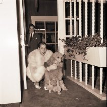 Image of Woman with Poodle at Brentwood Country Mart Opening Celebration, 1948 -