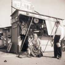 Image of Sea Lion Pup at Bait Shop, 1950 - 1950/02/07