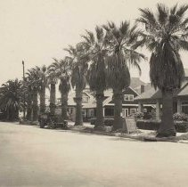 Image of Houses and palm trees at Wilshire Blvd & Third Street, Santa Monica - Early 1900s