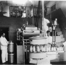 Image of Santa Monica Dairy Company Workers - 1900 circa