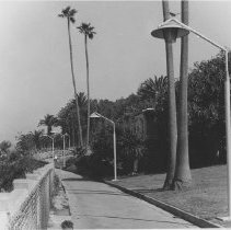 Image of Pedestrian Path in Palisades Park - undated