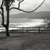 Image of Ocean and Pacific Coast Highway in Palisades Park, 1941 - 1941