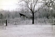 Image of 1997.022.010 - Print, Photographic