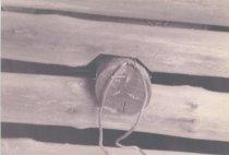 Image of 1998.012.010 - Print, Photographic