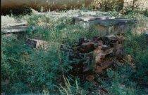 Image of 2000.090.116 - Print, Photographic