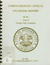 Image of Comprehensive Annual Financial Report 2002