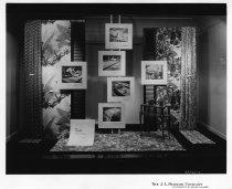 Image of 1982.145.036 - Print, Photographic