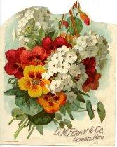 Image of 1947.135.164 - Engraving