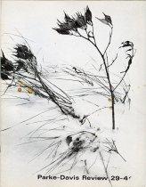 Image of 2008.017.127 - Magazine