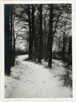 Image of 2014.002.578 - Print, Photographic