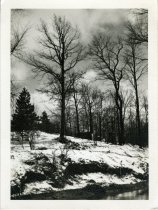 Image of 2014.002.583 - Print, Photographic