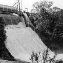 Image of 2011.500.304 - Negatives - Waikaremoana to Tahake River Bed