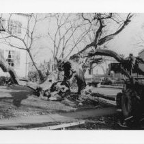 Image of Photo Archives - A_9_d_016