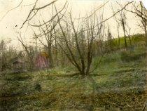 Image of 00039.79 - Location where Cedar Grove Mill stood.