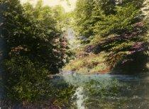 Image of Cobb's Creek below Cedar Grove