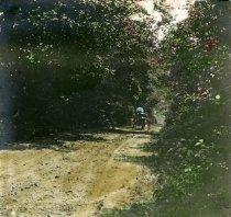 Image of 00071.138 - Powder Mill Lane below  the Saw Mill