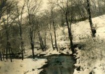 Image of 00072.139 - Valley of Cobbs Creek