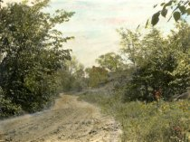 Image of 00084.163 - Road along Cobb's Creek near the Dam