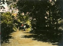 Image of 00085.164 - Powder Mill Lane near the Spring