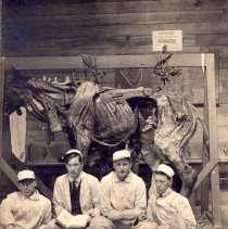 Image of Five men with a horse cadaver  (one man inside the horse).