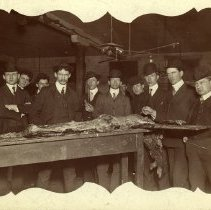 Image of Group of men wearing suits, ties and hats standing behind a table with dissected cadaver.