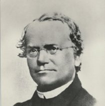 Image of Gregor Mendel (1822-1884) -