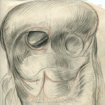 Image of Stomach and Intestines - Graphite, colored pencil, and ink renderings of the stomach and intestines. Includes 4 finished ink wash illustrations. Preparatory work for Warren's Handbook of Anatomy - section titled Jejuno-Ileum and Colon. Page 305-313. 44 pieces.
