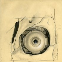 Image of The Eye - Graphite, ink, and colored pencil renderings of the eye. Includes 4 finished ink wash illustrations and 3 prints. For Warren's Handbook of Anatomy - sections titled The Orbits and The Eye. Page 65-76. 34 pieces.