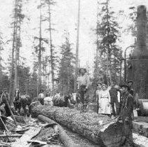 Image of Perrigo Logging Crew