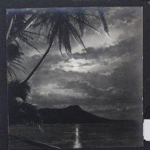 Image of Arthur E. Elder Photo Album V, VD-1. 1944 - Album, Photograph