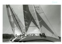 Image of Sailboats in the 1988 Regatta.