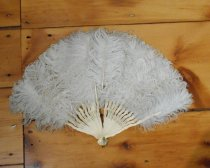 Image of ostrich feather fan