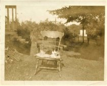 Image of Folder 15 - Cat outside house in rocking chair