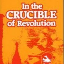 Image of Book - In the Crucible of Revolution