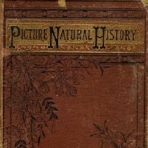 Image of Book - Picture Natural History